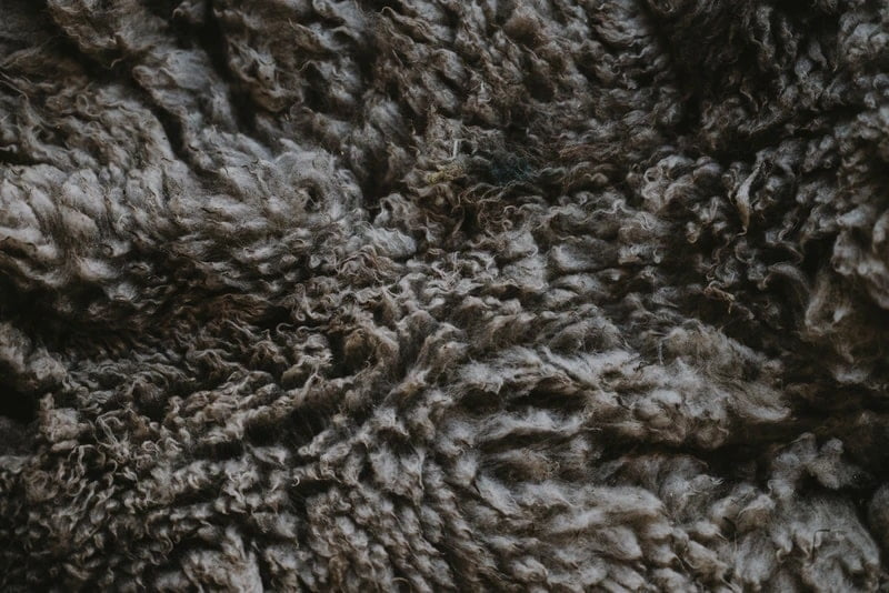 Wool textile fabric